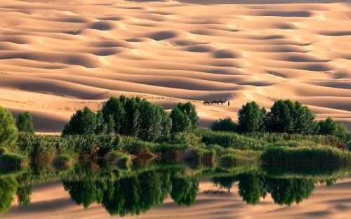 Oasis-in-Libyan-desert